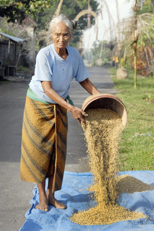 Vrouw giet rijst uit