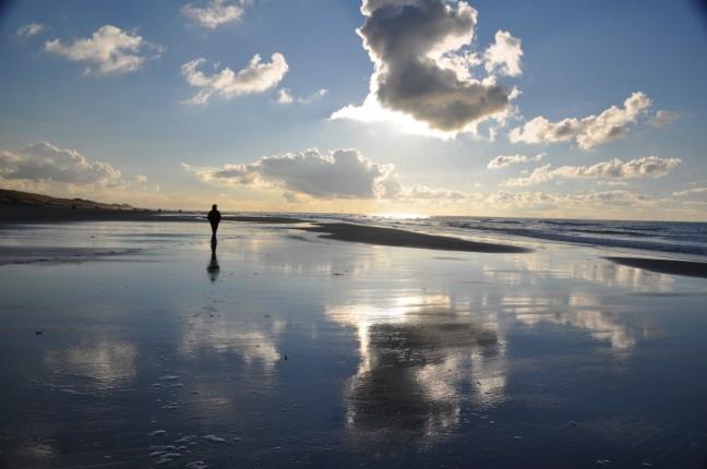 Eenzaam over het strand