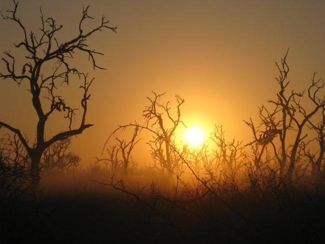 Hlane NP Sunrise
