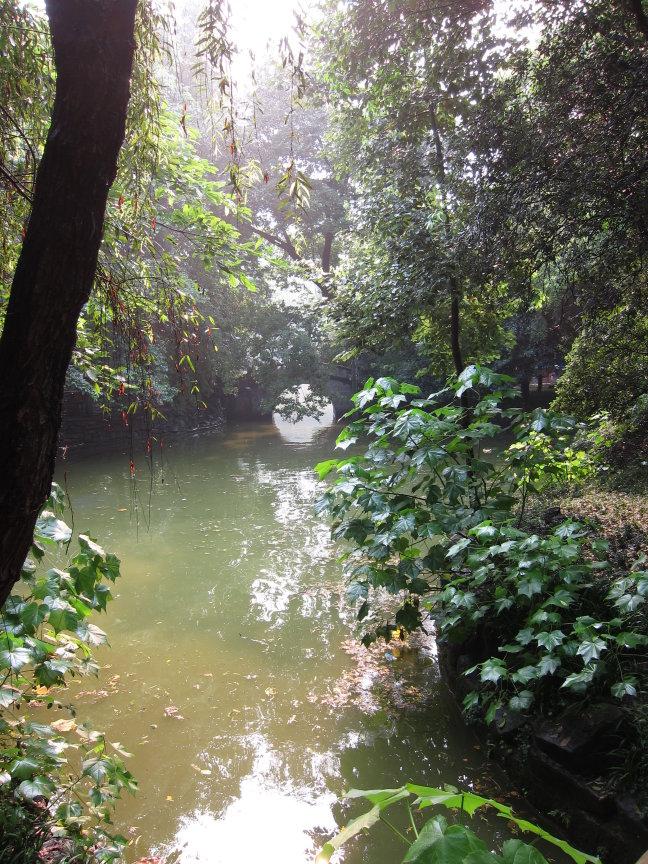 People's park in Chengdu