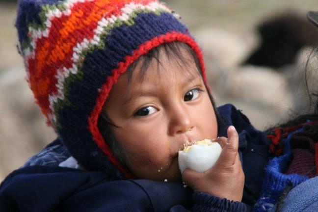 een ei hort erbij, dierenmarkt Otavallo
