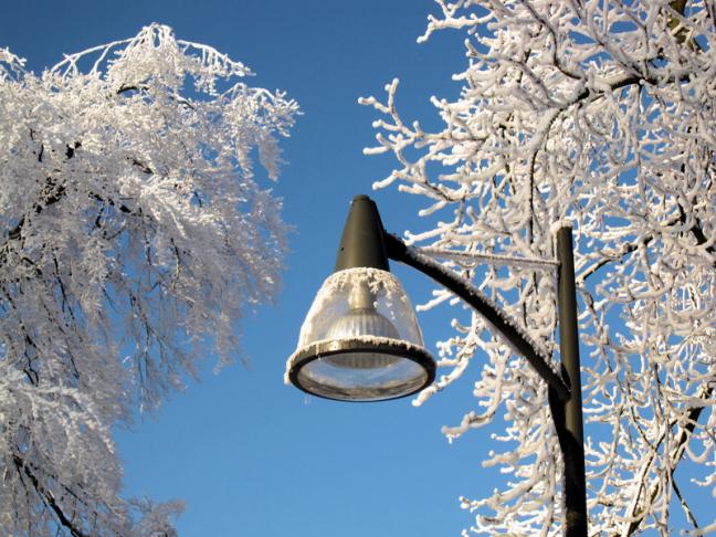 rijp op lantaarnpaal en bomen
