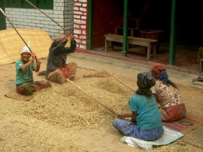 Landbouwactiviteiten