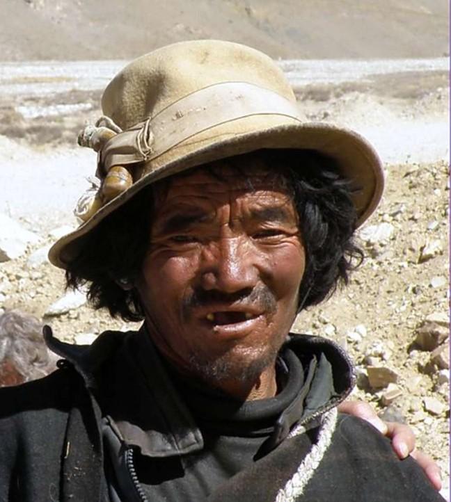 Tibetaanse herder