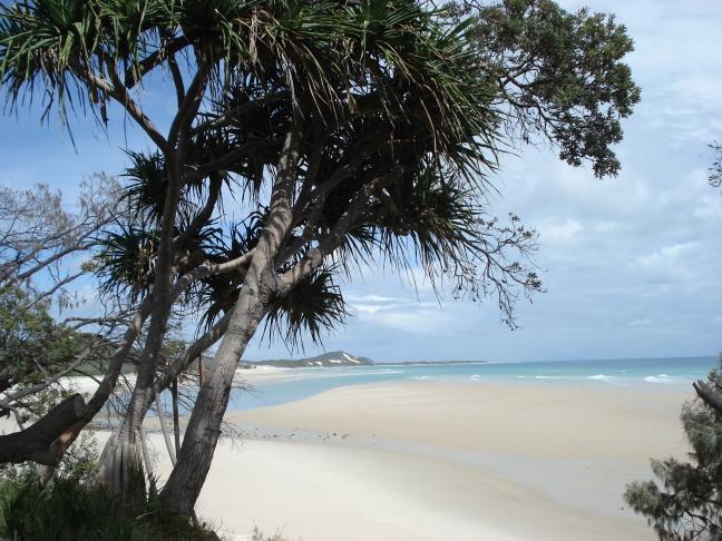Het mooie Moreton Island dat voor de kust van Brisbane ligt