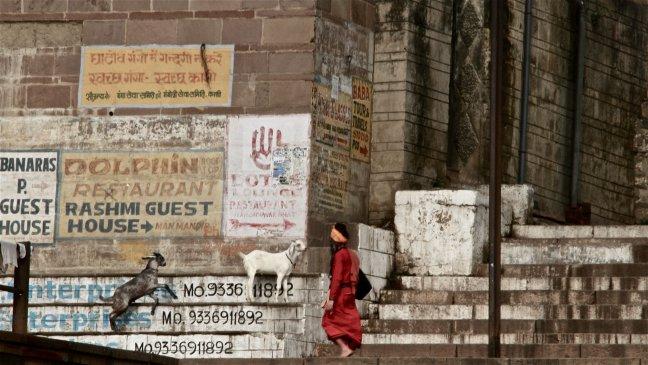 zoekplaatje aan de Ganges