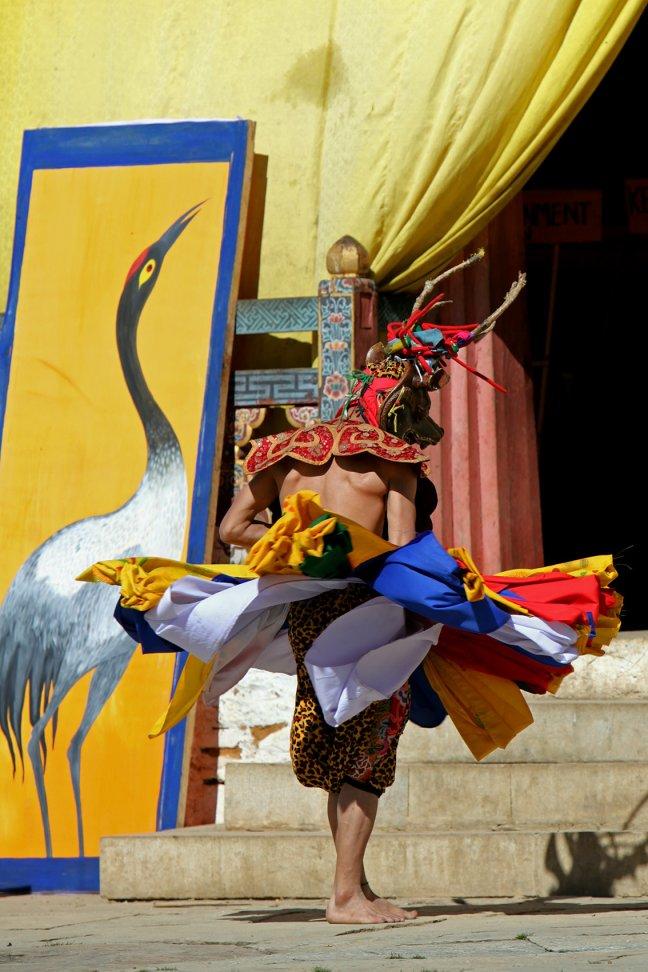 Black neck crane festival