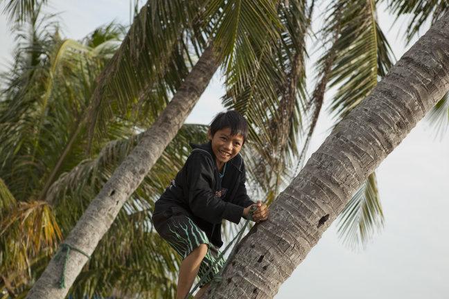 boompje klimmen