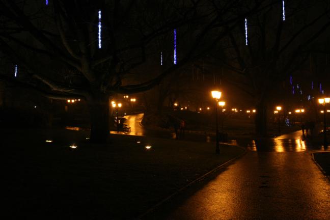 Park bij nacht