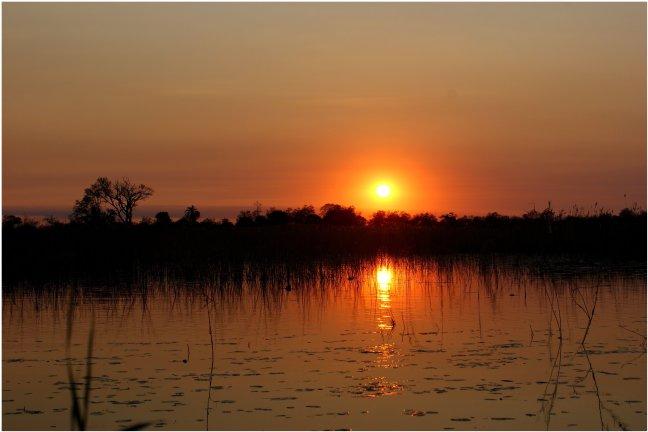 Zonsondergang in de Delta