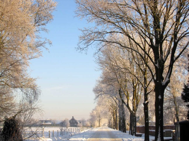 sneeuwlandschap bij Mierlo