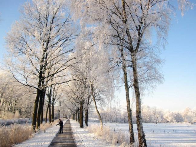 winterlandschap tussen Helmond en Mierlo