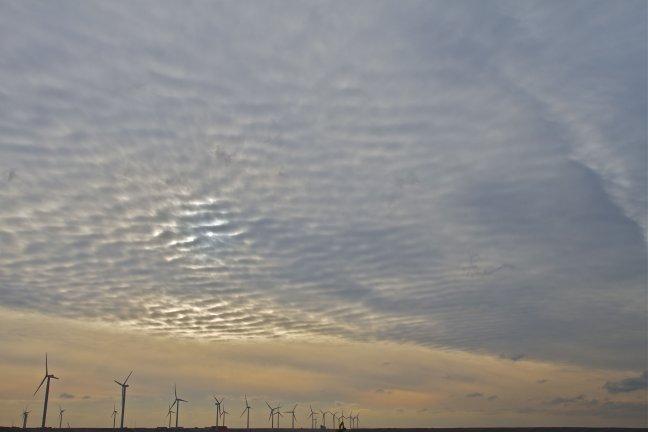 winterse lucht op Maasvlakte