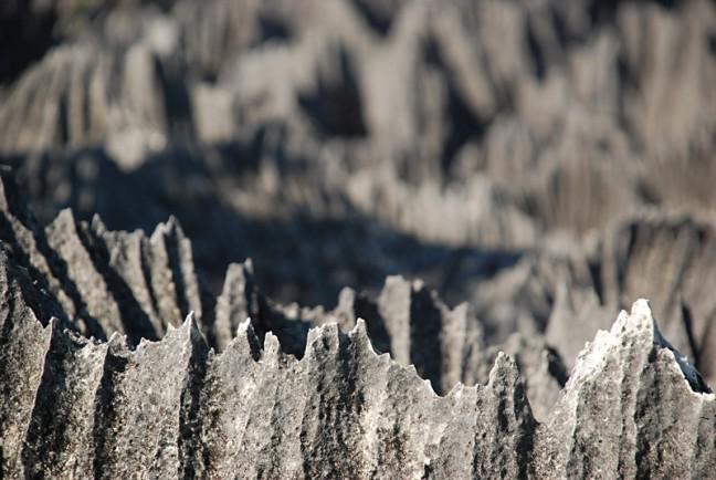 Grote Tsingy Gebergte - Vlijmscherpe rotspunten