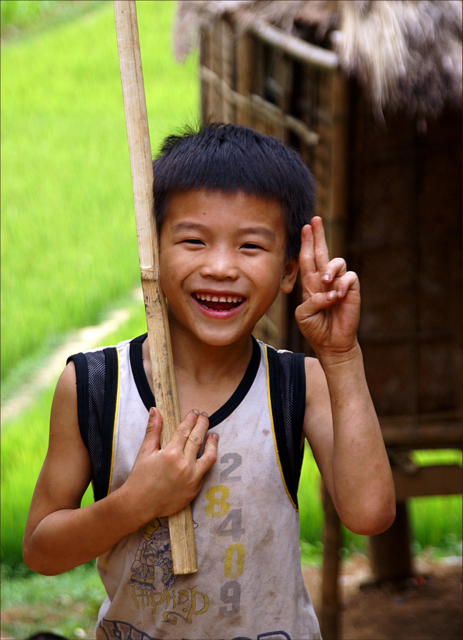De V van Vrolijkheid, Vrede, Vietnam?