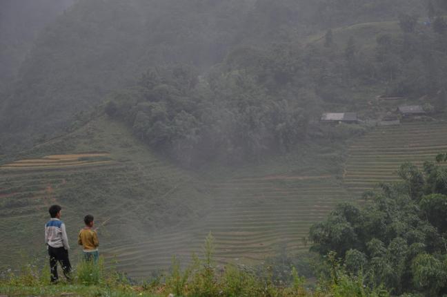 Jongetjes kijken uit over de heuvels van Sapa