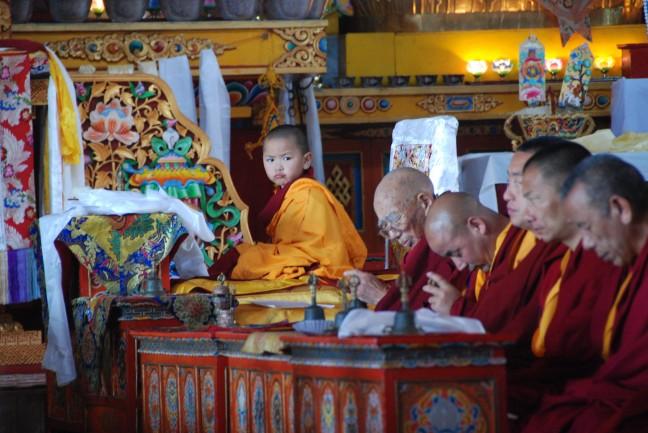 Reincarnatie van een Tibetaanse lama