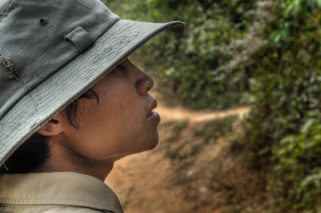Olifantengids Laos
