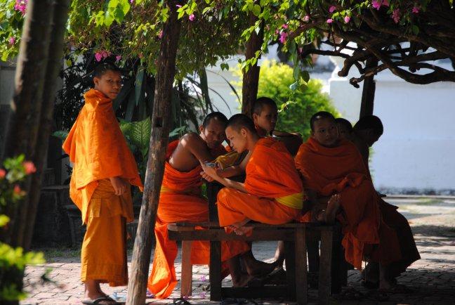 Monniken zoeken verkoeling