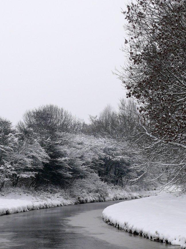 Zwart-Witte Winter 2010