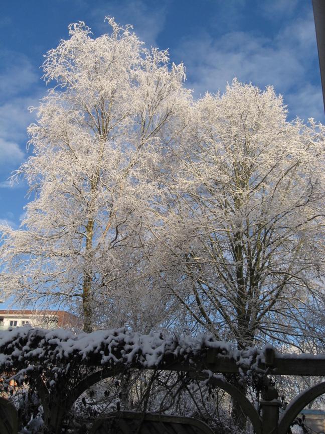 winters wereldje