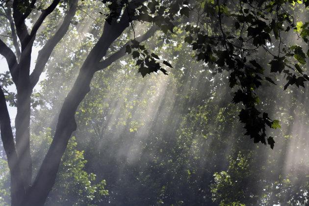 Na regen komt zonneschijn!!