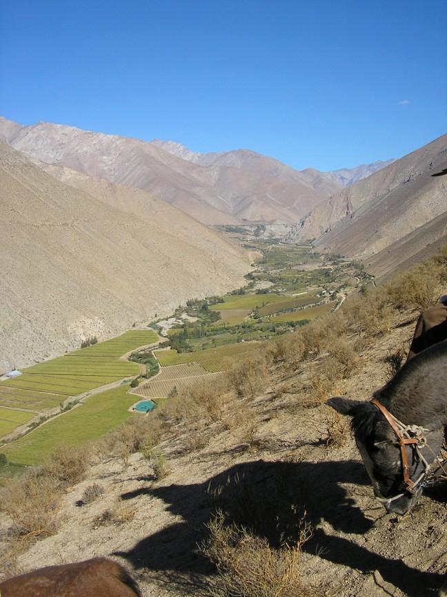 Chileens landschap