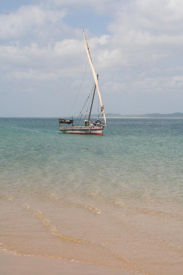 Vissersboot net aangekomen op Manda Island met vangst: 2 zwaardvissen