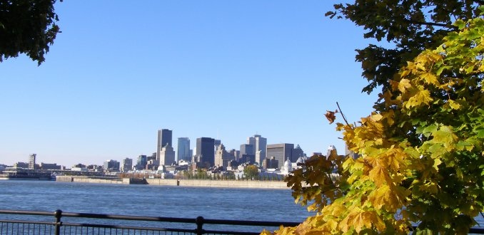 Skyline Montreal
