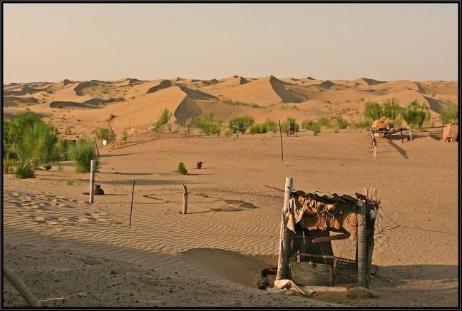 Wonen in de woestijn