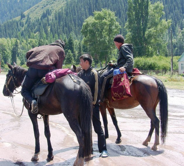 Paarden in Kigizië 3