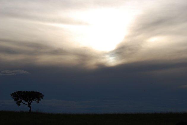 Mooi uitzicht in Los Llanos