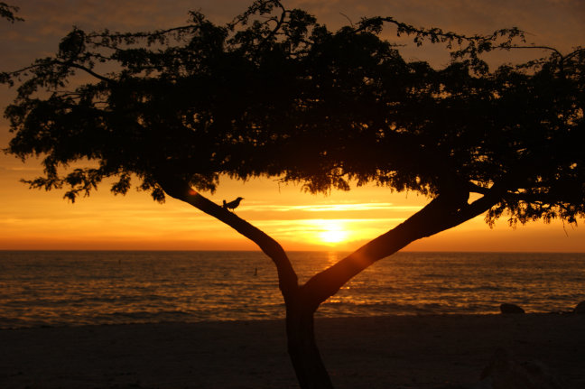 Sunset on Eagle Beach