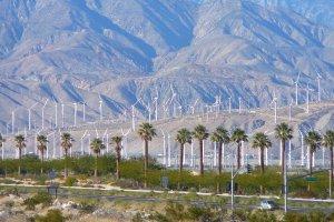 Windmolenpark bij Palm Springs