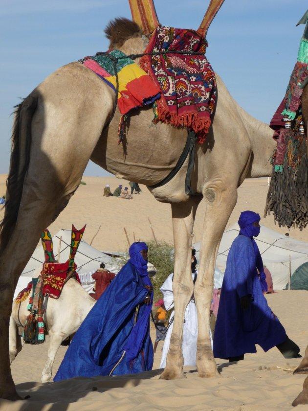 Kamelen en touaregs nabij Timboektoe