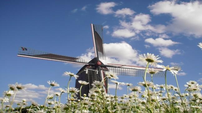 Ouderwetse Korenmolen op windenergie te Moergestel