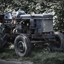 '324549' door Judith-fotografie