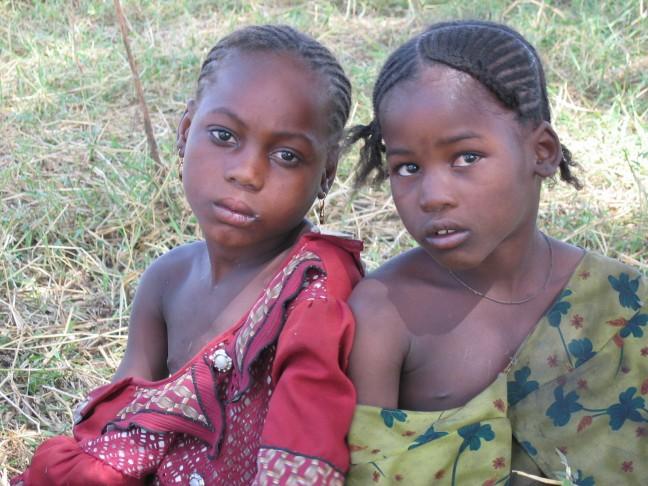 Verlegen meiden aan het Tsjaad meer
