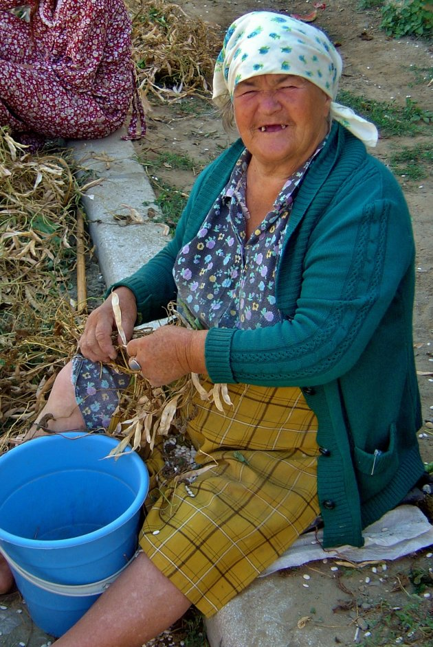 Romania's next working model…