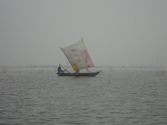 Visser of Nokoué-meer