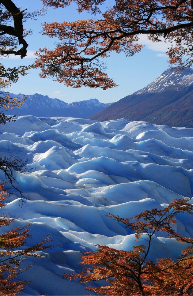 Een zee van ijs