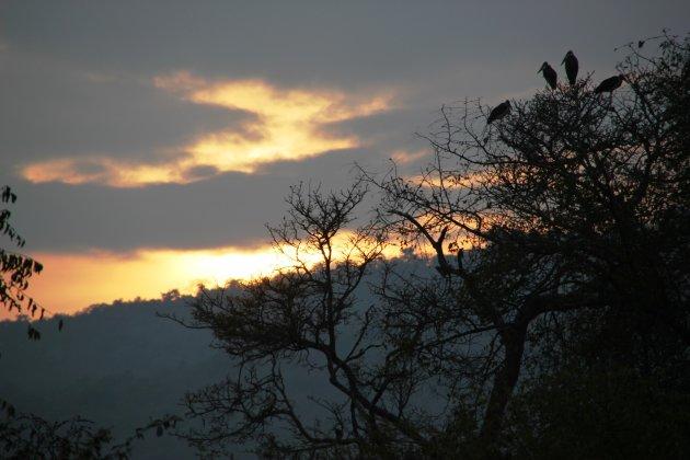 Marabu Sunset @ Akagera