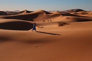 Kuifje in de Sahara