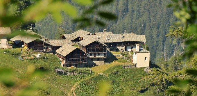 Alpenzu Grande