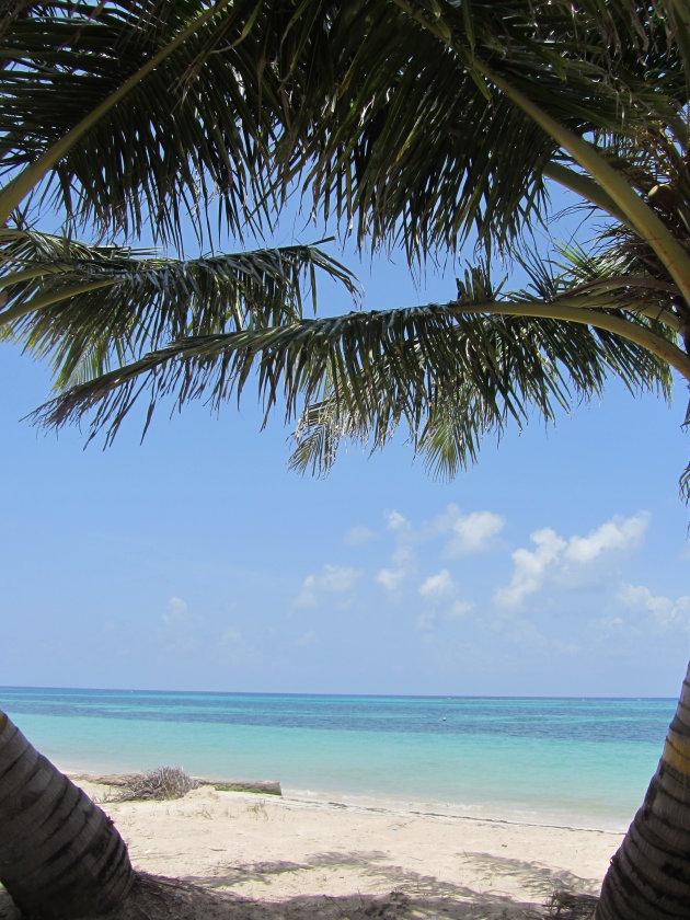 De turquoise zee van Little Corn Island