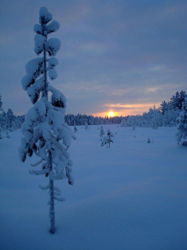 Fins Lapland in januari om 12 uur 's middags, de zon op zijn hoogste punt
