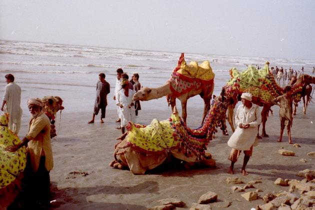 Kamelen aan het strand Karachi