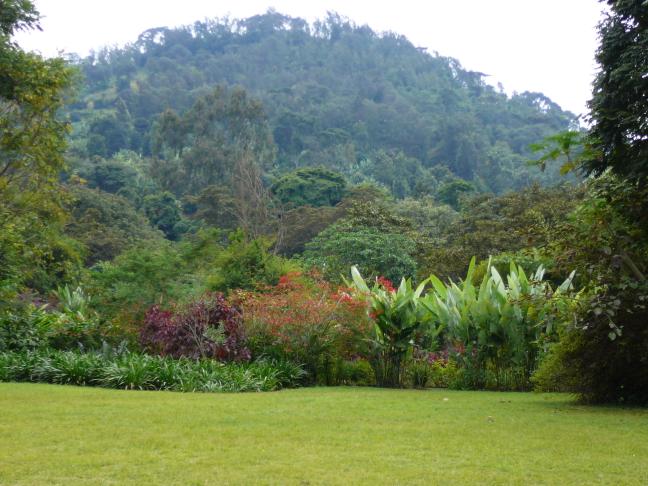Tuin van de Lodge