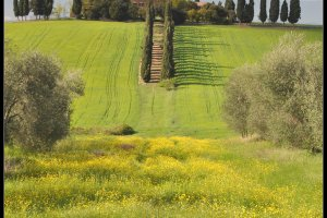 Klassiek Toscane