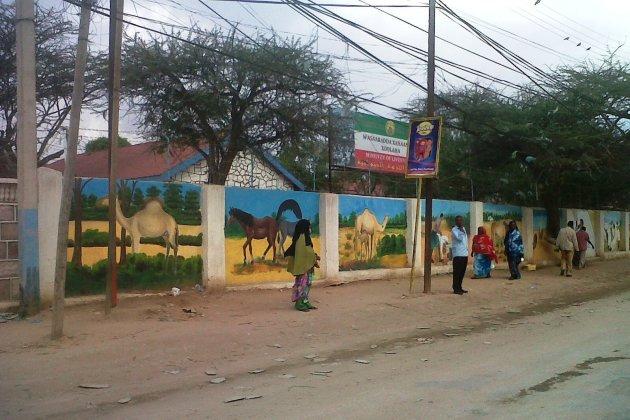 Het fleurige straatbeeld van Somaliland, Hargeisa
